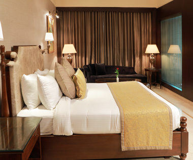 Luxury Suite in Ludhiana